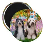 Garden / 2 Bearded Collie Magnet
