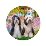 Garden / 2 Bearded Collie 3.5