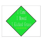 I Kicked Grass Small Poster