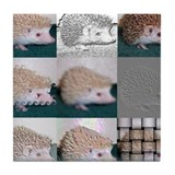 Tic Tac Toe Hedgehog Tile Coaster