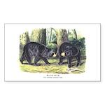 Audubon Black Bear Animal Rectangle Sticker