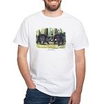 Audubon Black Bear Animal White T-Shirt