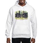 Audubon Black Bear Animal Hooded Sweatshirt
