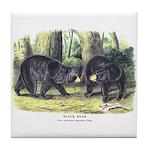 Audubon Black Bear Animal Tile Coaster
