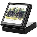 Audubon Black Bear Animal Keepsake Box