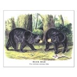 Audubon Black Bear Animal Small Poster