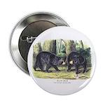 Audubon Black Bear Animal 2.25