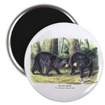 Audubon Black Bear Animal Magnet