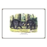 Audubon Black Bear Animal Banner