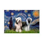 Starry / 2 Bearded Collies Mini Poster Print