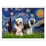 Starry / 2 Bearded Collies Small Poster