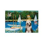 Sailboats / Beardie #1 Rectangle Magnet (10 pack)