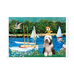 Sailboats / Beardie #1 Mini Poster Print