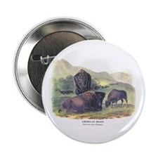 "Audubon American Bison Buffalo 2.25"" Button (10 pa"