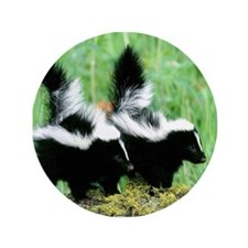 "Two Skunks 3.5"" Button"