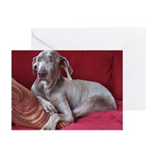 Weinaraner Greeting Cards (Pk of 20)