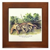 Audubon Cougar Cat Animal Framed Tile