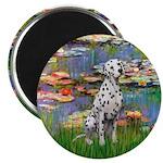 Lilies/ Dalmatian #1 Magnet