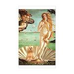 Venus / Lhasa Apso #9 Sticker (Rectangle)