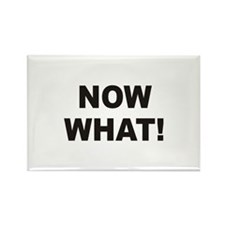 Now What Rectangle Magnet (10 pack)