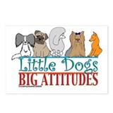 Big Attitudes Postcards (Package of 8)