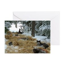 Christmas Rest Stop Greeting Cards (Pk of 10)