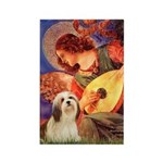 Mandolin / Lhasa Apso #4 Rectangle Magnet
