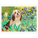 Irises / Lhasa Apso #4 Small Poster