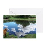 Reflections Blank Cards (Pk of 10)