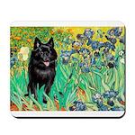 Irises / Schipperke #2 Mousepad
