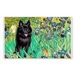 Irises / Schipperke #2 Sticker (Rectangle 50 pk)