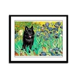 Irises / Schipperke #2 Framed Panel Print