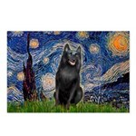 Starry / Schipperke #5 Postcards (Package of 8)