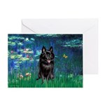 Lilies / Schipperke #4 Greeting Card