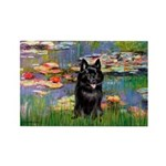 Lilies / Schipperke #4 Rectangle Magnet