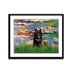 Lilies / Schipperke #4 Framed Panel Print