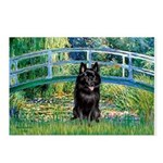 Bridge / Schipperke #4 Postcards (Package of 8)