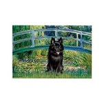 Bridge / Schipperke #4 Rectangle Magnet
