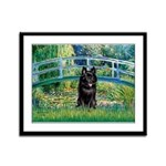 Bridge / Schipperke #4 Framed Panel Print