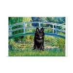 Bridge / Schipperke #4 Mini Poster Print