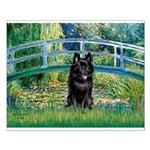 Bridge / Schipperke #4 Small Poster