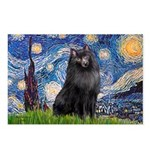 Starry / Schipperke #2 Postcards (Package of 8)
