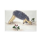 Downward Facing Yoga Hedgehog Rectangle Magnet (10