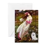 Windflowers / Eskimo Spitz #1 Greeting Cards (Pk o