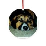 Beagle Dog Keepsake (Round)