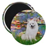 Lilies / Eskimo Spitz #1 Magnet