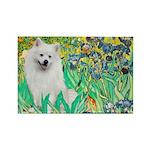Irises / Eskimo Spitz #1 Rectangle Magnet (10 pack