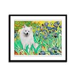 Irises / Eskimo Spitz #1 Framed Panel Print