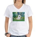 Bridge / Eskimo Spitz #1 Women's V-Neck T-Shirt