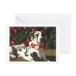 Holiday Harl Tree Greeting Cards (Pk of 10)
